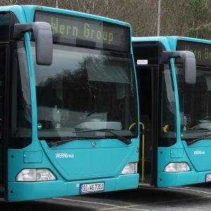Busse der VWS, WernGroup